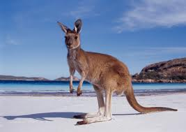 Discount Airline Tickets: Bali, Indonesia, To Perth, Australia, Just $231.40 One Way