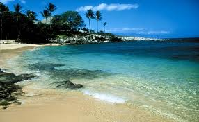 Visit Hawaii and Explore the Island of Maui