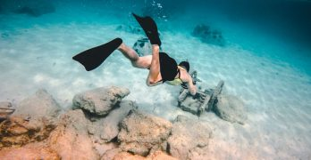 Discover The Best Snorkelling Destinations In The World