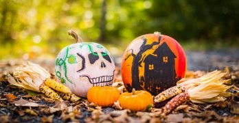 Flights For Halloween To Discover The Best Halloween Celebrations