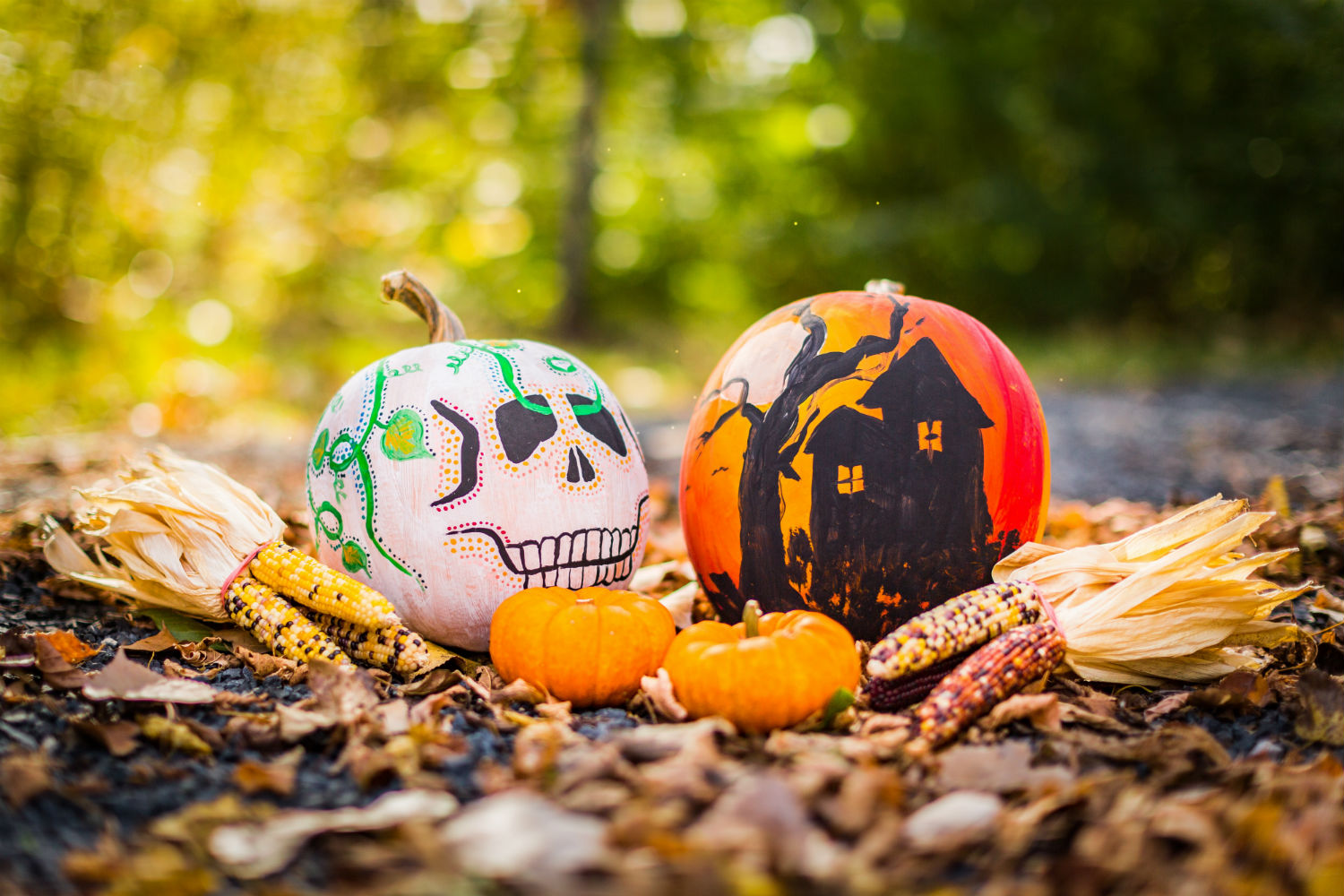 Discover The Best Halloween Celebrations For 2020